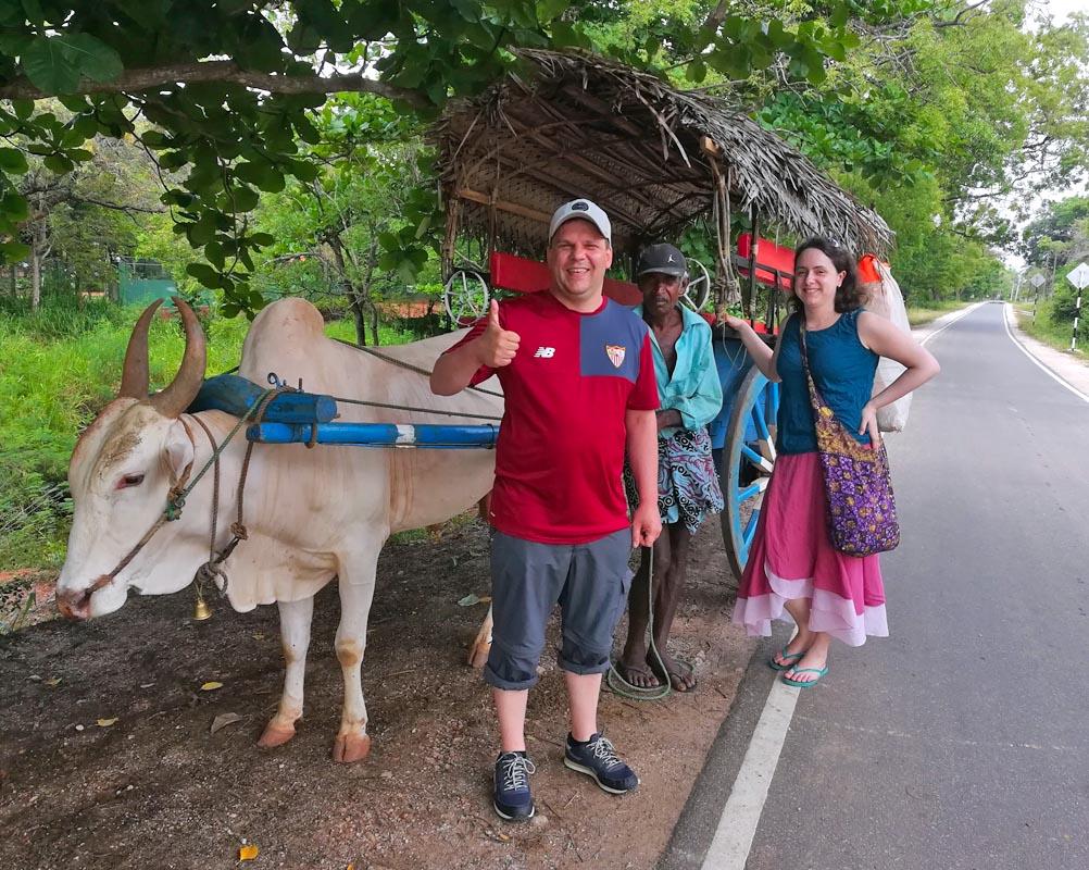 G1 - Sri Lanka Tour Driver with Car