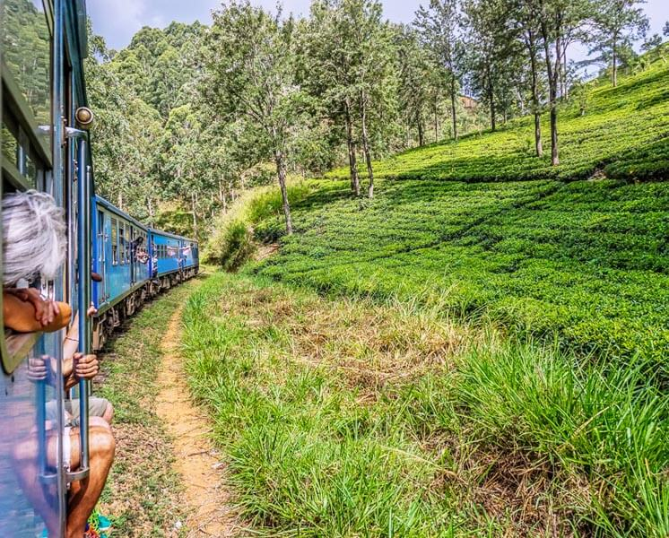 Train Journey from Kandy to Nanu Oya